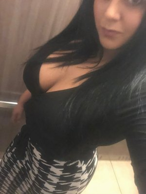 Soazic incall escort Shelbyville